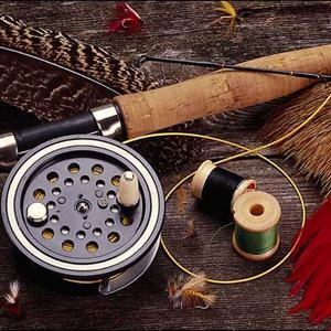 Охотничьи и рыболовные магазины Сестрорецка